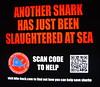 Help The Sharks (pringle-guy) Tags: fish london animals nikon sealife londonaquarium חיות דג אקווריום לונדון דגים בעליחיים
