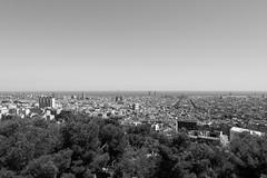 B&W Bara (Duncan WJ Palmer) Tags: barcelona city blackandwhite bw skyline spain espana gaudi catalunya parcguell guell espanya