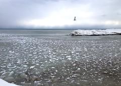 2014-01-25 14.05.05 a (gordandlee) Tags: lake ice thebeach 2014