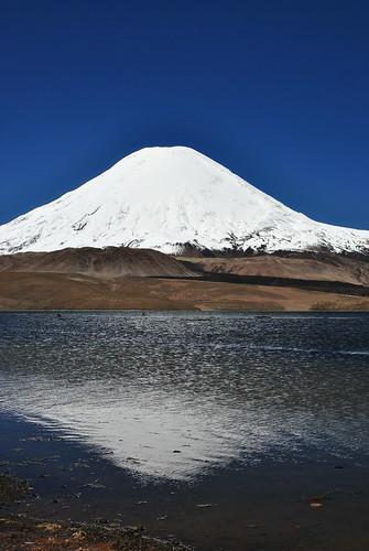 Volcan Parinacota y Lago Chungara