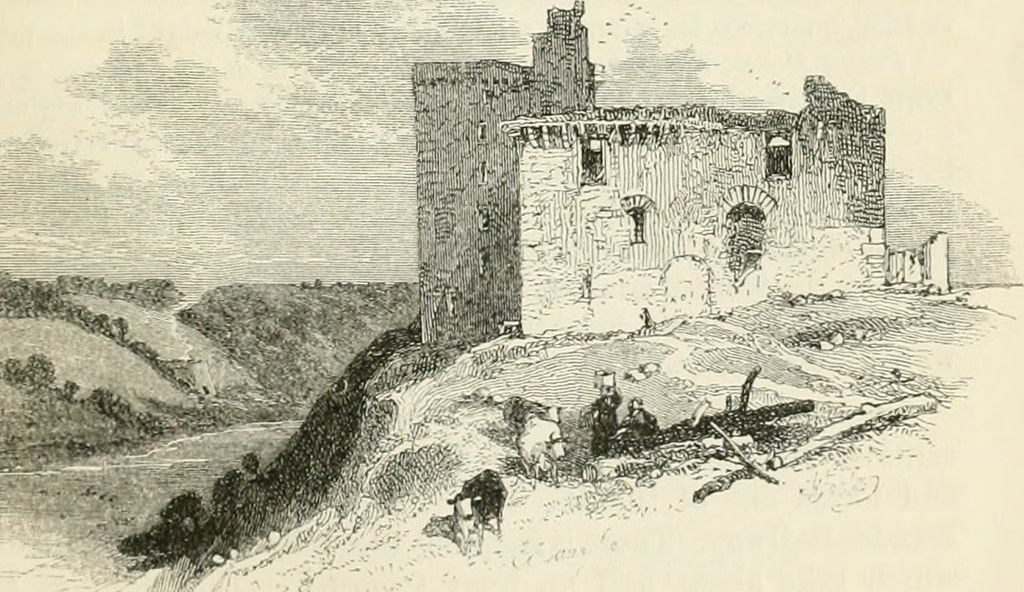 "Image from page 144 of ""Black"