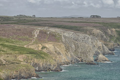 cote bretonne (didier ribes) Tags: sea cliff mer france rock walking vacances nikon bretagne didier falaise rocher 28300mm vr marcheur afs randonne atlantique ribes