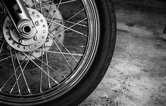 Whatever moves you (gavettetim) Tags: blackandwhite wheel harley harleydavidson