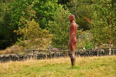 Nibthwaite man (johnd2008) Tags: walks lakedistrict cumbria coniston anthonygormley