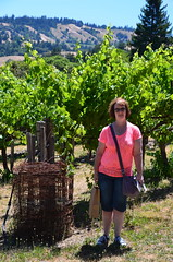 USA - California - Husch Vineyards Winery (Jim Strachan) Tags: