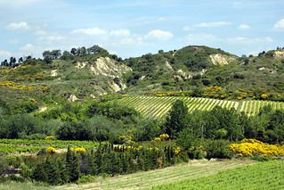 Provence Captured from the A-9 Autoroute