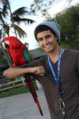 IMG_4494 (isaac.ayala619) Tags: pictures life color smile birds happy for san shot diego
