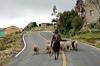 Quilotoa, Ecuador (Jessie Reeder) Tags: road ruta rural town ecuador sheep carretera country estrada local equador rodovia quilotoa