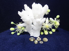 Zultanite + Aragonite (gem.mania) Tags: old white flower colour beard crystal mans change specimen gemstones aragonite diaspore zultanite