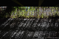 Sunny Fence Monday / Explored 22.09.2014 (Frank Guschmann) Tags: nikon explore schatten parkandride explored inexplore d7100 sbhfbundesplatz frankguschmann nikond7100