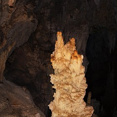 A stalagmite rises from the floor of a Coral cave (B℮n) Tags: bear park trip morning wild white mountain lake elephant man mountains rain coral forest asian thailand mouse three boat squirrel rainforest sandstone rocks long kayak dam wildlife south tiger landmark deer erosion virgin dirt trail torch national jungle monsoon limestone cave ha thani stalagmite hai karst mammals boar oldest langur formations handed barking khao klong roi macaque sambar surat sok gibbons serow pigtailed muntjak banteng guar oerbos เขาสก 950m ratchaprapha