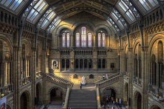 Darwin's Chapel