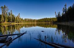 Scaup Lake Reflected (Bo47) Tags: camera blue trees usa lake reflection nature water nationalpark unitedstates yellowstonenationalpark northamerica yellowstone wyoming done geotag hdr highdynamicrange 2010 bo47 nikkor24mmf28 bonielsen scauplake nikond3s wwwjustwalkedbycom wwwbonielsenme