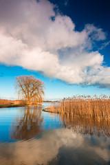 20170224-Canon EOS 6D-2702 (Bartek Rozanski) Tags: reeuwijk zuidholland netherlands holland nederland reeuwijkseplassen oukoop lake water cloud reflection sunset greenheart groenehart