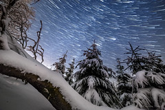 startrail over the feldberg (cfaobam) Tags: startrail strichspur strichspuren snow forest trees winter frost ice baum europe landschaft landscape travel photography nature national geographic cfaobam schnee wald bäume tree groser feldberg hessen