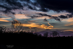heavenly ... (mariola aga) Tags: winter meadow evening sunset coldweather sky colorful clouds twilight light trees branches silhouettes thegalaxy