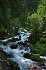 IMG_6292 (Pfluegl) Tags: wallpaper salzburg water austria waterfall sterreich wasser europa europe wasserfall christian cataract hintergrund pfluegl golling cascarde pflgl