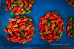 Naga chilies