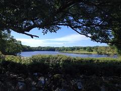 Beaulieu River from Beaulieu Cricket Club. (Maw*Maw) Tags: