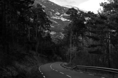 El camino se oscurece (Lograi) Tags: barcelona road sky blackandwhite bw espaa mountain tree byn blancoynegro geotagged blackwhite spain nikon carretera catalonia bn cielo rbol catalunya montaa catalua berga queralt espanya nikond40 geoetiquetada