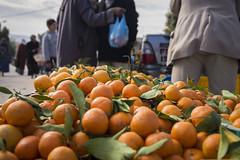 Village markets - Tunisia (Dryland Systems) Tags: farmers tunisia research climatechange desertification nawa drylands cgiar icarda smallholders unccd agroecosystems systemsapproach drylandsystems drylandsystemscrp11