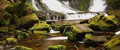 Horseshoe Falls/Mt Field National Park (Edwinna Bartley) Tags: waterfalls tasmania horseshoefalls mtfieldnationalpark tasmanianwaterfalls