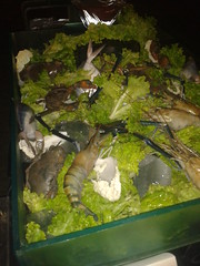 2012-11-04 21.58.49 (ankitjha18) Tags: food fish cold samsung crab shellfish seafood