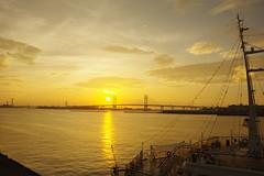 Golden sunrise @Yokohama (Kumawo) Tags: bridge sun japan sunrise baybridge yokohama k3 penrax