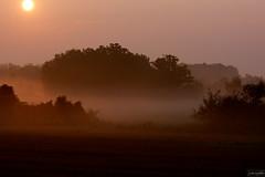Morning Has Broken ~ Michigan (j van cise photos) Tags: michigan farmfields earlymorningmist unlimitedphotos afsnikkor70200mmf28gedvrii nikond7100 pressltoenlarge