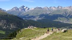 Alp Languard, 18.7.14 (ritsch48) Tags: switzerland engadin pontresina graubünden alplanguard