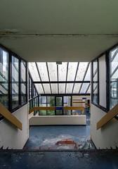 Sortie sanglante. (LoquioR) Tags: abandoned hotel hostel blood stair decay room corridor exploration chambre escalier urbex urbaine abandonn
