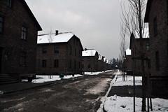 Auschwitz (014)