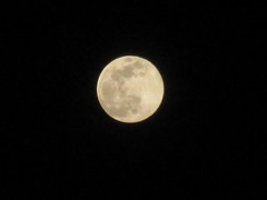 Full Moon (anantohermawan1988) Tags: wallpaper moon beautiful beauty canon indonesia lens photography photo nice photos good picture visit best full enjoy welcome indah visiting gambar magnificent kamera photostream enjoyed bulan 2014 wonderfull bagus lensa