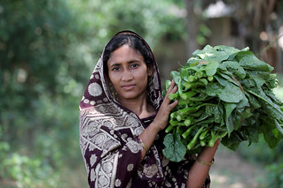 Woman carrying home vegetables in Khulna, Bangladesh. Photo by M. Yousuf Tushar. April 18, 2014