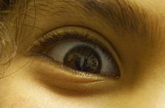 That Look In His Eye [Explore!] (Apotheoun) Tags: