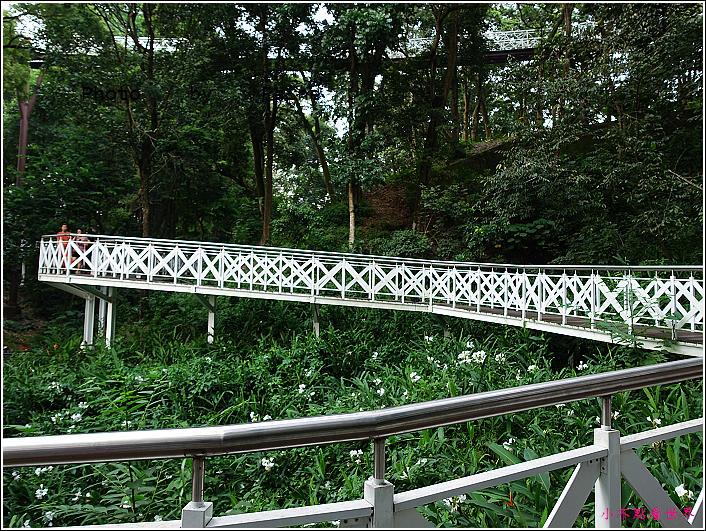 嘉義竹崎公園 (23).JPG
