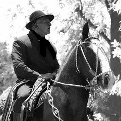 El zaino malacara (Eduardo Amorim) Tags: horses horse southamerica argentina criollo caballo cheval caballos cavalos pferde cavalli cavallo cavalo gauchos pferd apero chevaux gaucho cavall  amricadosul beijos gacho amriquedusud provinciadebuenosaires  gachos  sudamrica sanantoniodeareco suramrica amricadelsur areco sdamerika crioulo caballoscriollos criollos  pilchas pilchasgauchas americadelsud crioulos cavalocrioulo americameridionale caballocriollo eduardoamorim cavaloscrioulos