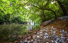 Voidomatis river (Fotis Gatsios) Tags: trees nature leaves reflections river landscape pebbles greece ioannina epirus omot fotisgatsios
