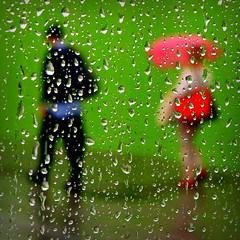 follow me (Vesa Reijonen) Tags: rain umbrella human