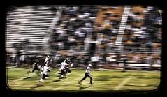 Alamogordo Tigers vs Gadsden Panthers (lackystrike) Tags: usa newmexico football nikon tigers win amerika touchdown alamogordo panther americanfootball alamogordotigers gadsdenpanthers