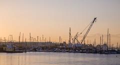 Port of Oakland (Tony Webster) Tags: california oakland unitedstates cranes portofoakland oaklandmarina cgp1522b