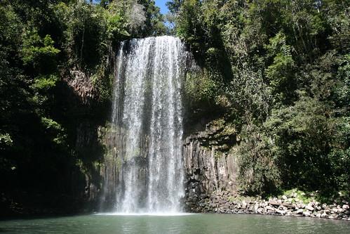 Millaa Millaa Falls (9)
