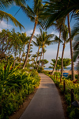 Walkway along Kaanapali beach (The Spider Pig) Tags: trees beach hawaii nikon maui palm kaanapali d90