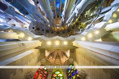 Sagrada Família, Barcelona (Naomi Rahim (thanks for 3 million visits)) Tags: barcelona spain españa europe europa 2016 travel travelphotography nikon nikond7200 church architecture interior stainedglass windows basilica sagradafamília 1116mm colourful gaudi antonigaudi modernist