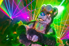 _MG_0653 (Tiger_Icecold) Tags: confuzzled cfz2016 cf2016 furcon furry convention fursuit birmingham party deaddog ddp deaddogparty