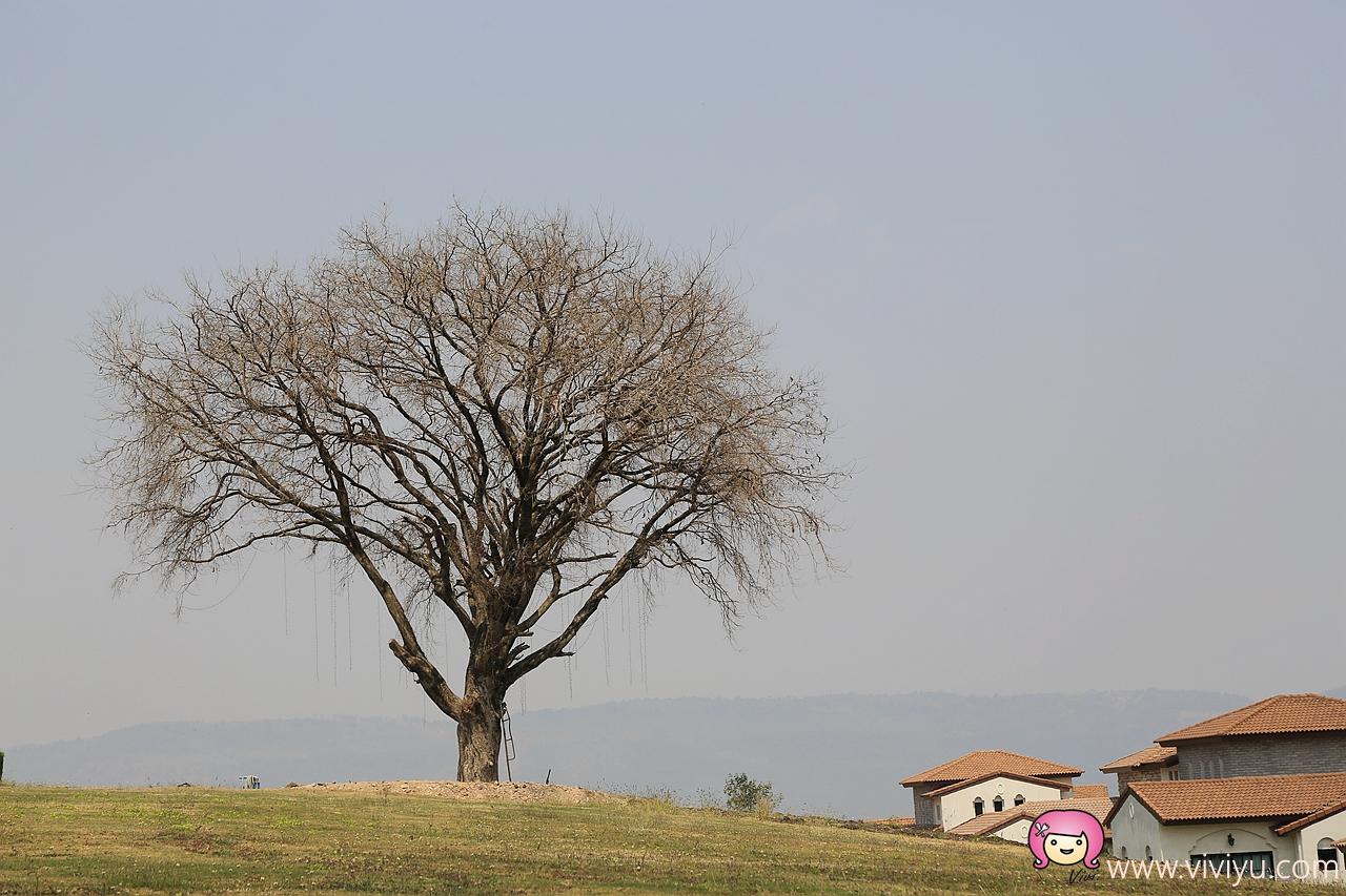 _D9A3116