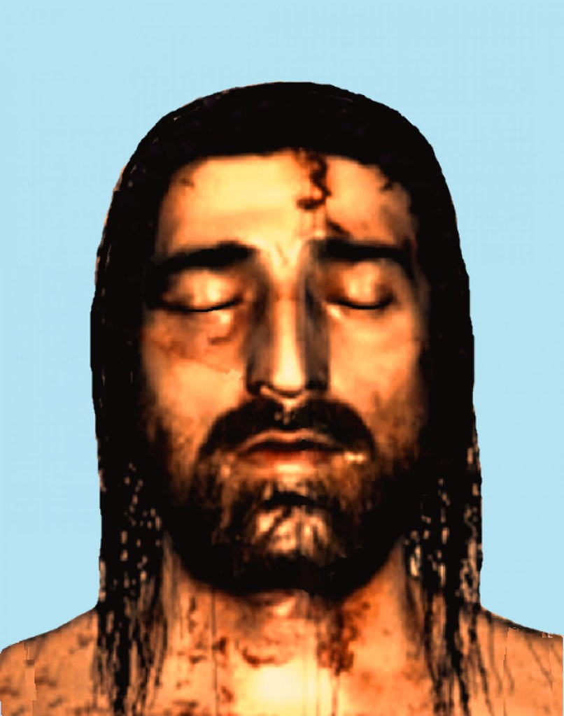 the shroud Shroud definition, a cloth or sheet in which a corpse is wrapped for burial see more.