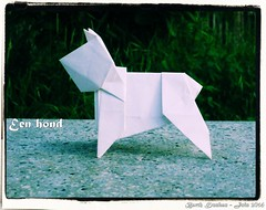 Een hond - Barth Dunkan (Magic Fingaz) Tags: hond perro hund origamidog origamichien