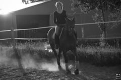 Das Glck der Erde auf dem Rcken vom Pferde (PMU - Photography) Tags: wild horse woman sun girl evening abend powder riding das dust frau der sonne pferde dem auf pferd rcken vom rauch erde staub glck kontrolle disziplin kontrollierte