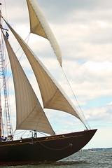 Forward (joegeraci364) Tags: ocean wood sea water sport sailboat vintage action yacht antique vessel bow sail mast nautical schooner virginaia